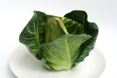 Fresh Green Cabbage Royalty Free Stock Image