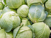Fresh green cabbage on display Royalty Free Stock Photography