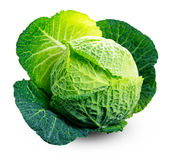 Fresh Green cabbage isolated on white background.  Royalty Free Stock Photography