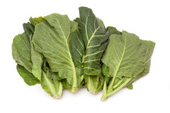 Fresh green cabbage leaves Royalty Free Stock Photography