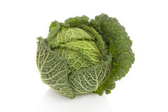 Fresh green cabbage Royalty Free Stock Photos