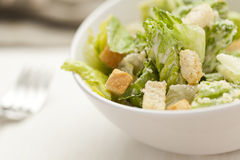 Fresh green Caeser Salad Royalty Free Stock Images