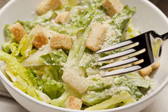 Fresh green Caeser Salad Stock Photos