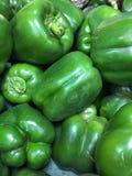 Fresh green capsicums Stock Image