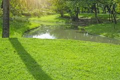 Fresh green carpet grass yard, smooth lawn in a beautiful garden and good care landscaping, beside a curve long lake and trees. Fresh green carpet grass yard stock images