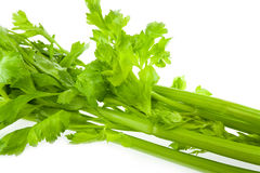 Fresh green celery isolated on white Royalty Free Stock Image