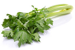Fresh green celery Stock Photo