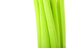 Fresh green celery isolated on white Royalty Free Stock Images
