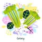 Fresh green celery vegetable juice splash organic food juicy vegetables splatter on abstract background vector. Hand drawn illustrations vector illustration