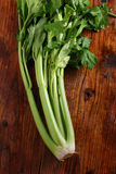 Fresh green celery Stock Photography