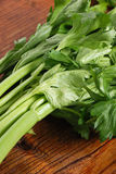 Fresh green celery Stock Image
