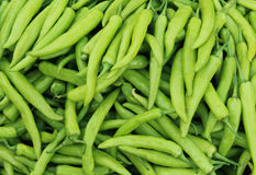 Fresh Green chilies Stock Photos