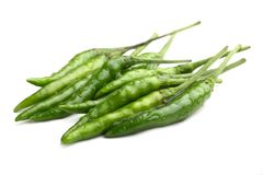 Fresh Green chilly close up isolated on white Royalty Free Stock Image