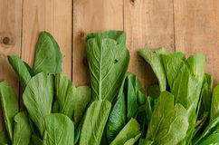 Fresh Green Chinese Cabbage, Bok Choy, Pok Choi or Pa. Vegetable, Fresh Green Chinese Cabbage, Bok Choy, Pok Choi or Pak Choi on wood table Royalty Free Stock Photo