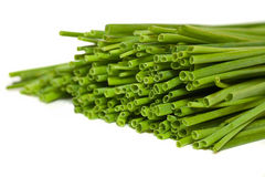 Fresh Green Chives Stock Image