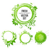 Fresh green circle label Stock Image