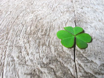 Fresh green clover leaves over wooden background,  Stock Photos