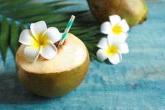 Fresh green coconut with drinking straw royalty free stock photos
