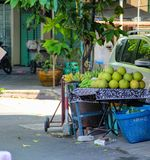Fresh green coconut fruit Bangkok, Thailand, Kuala Lumpur, Malaysia stock images