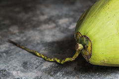 Fresh Green Coconuts on the concrete floor Royalty Free Stock Images