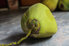 Fresh Green Coconuts on the concrete floor Stock Photo