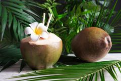Fresh green coconuts Stock Photo