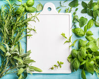 Fresh green cooking herbal assortment. Sage, basil, rosemary, melissa and mint on blue background with copy space Stock Images