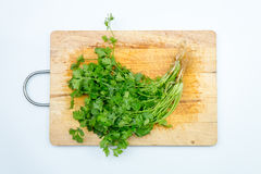 Fresh green Coriander leaves heap Royalty Free Stock Photos