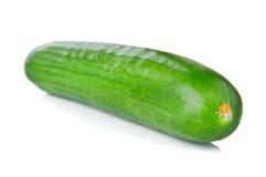 Fresh green cucumber Stock Photography