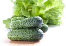 Fresh green cucumber. And lettuce Royalty Free Stock Photos