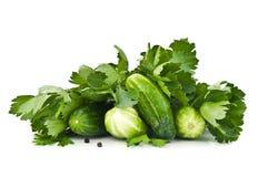 Fresh green cucumber Royalty Free Stock Photos