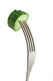 Fresh green cucumber at the fork Royalty Free Stock Image