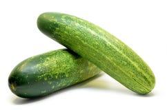 Fresh green cucumber. Isolated on white background Royalty Free Stock Photo