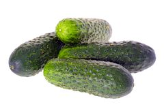 Fresh green cucumber isolated on white background Stock Photos