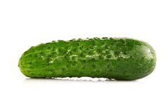 Fresh green Cucumber on white background Royalty Free Stock Photo