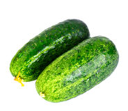 Fresh Green Cucumbers Isolated on White Background. Studio Photo Stock Images