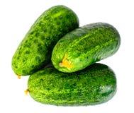 Fresh Green Cucumbers Isolated on White Background. Studio Photo Stock Image