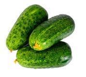 Fresh Green Cucumbers Isolated on White Background. Studio Photo Royalty Free Stock Image