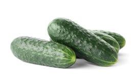 Fresh green cucumbers, isolated on white. Fresh green cucumbers on white background Stock Photography