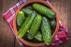 Fresh green cucumbers. Fresh green pickling cucumbers in wooden bowl Stock Image
