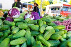 Fresh organic cucumbers at the local farmers` market. Royalty Free Stock Images