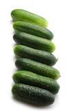 Fresh green cucumbers. On white Stock Photo