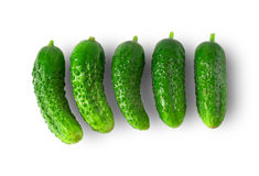 Fresh green cucumbers. On a white background Royalty Free Stock Photography