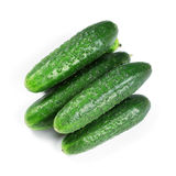 Fresh green cucumbers. On white background Royalty Free Stock Photos
