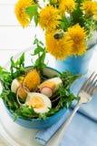 Fresh green dandelion salad on blue bowl Stock Images