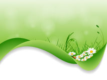 Fresh green design Stock Images