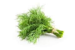 Free Fresh Green Dill Royalty Free Stock Photo - 94475595