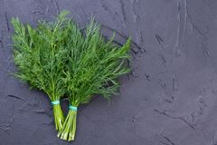 Free Fresh Green Dill, Copy Space. Stock Photo - 113500780