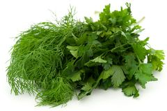 Fresh green dill and parsley Royalty Free Stock Photo