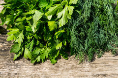 Fresh green dill and parsley herbs on rustic wooden table Stock Photography